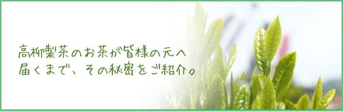 高柳製茶のお茶が皆様の元へ届くまで、その秘密をご紹介。